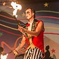Cirque Twerque